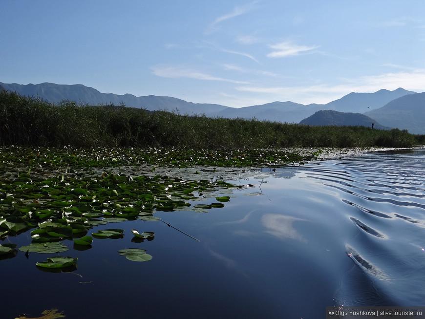 Пейзаж, наверно, был бы гораздо более банальным и традиционным, если бы не горы, которые почти по всему периметру окружают озеро...