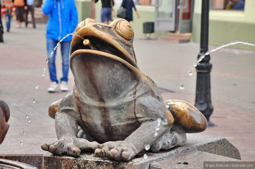 04. Мексиканская гипно-жаба.