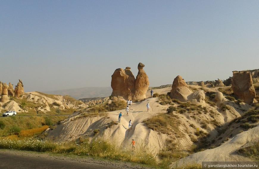 Гора Верблюд.