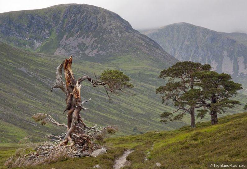 Будьте внимательны в горах Шотландии!