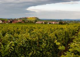Самые красивые  деревеньки  Эльзаса.