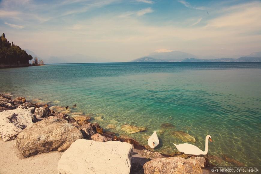 Озеро Гарда и вид на веронский берег и на гору Бальдо
