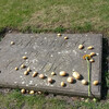Захоронение Фридриха Великого