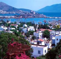 В Турции стартовал проект по очистке заливов