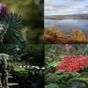 Террасные сады над озером Лох-Несс