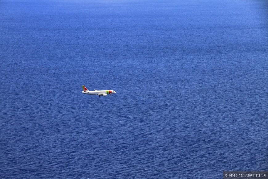 Вот и все. Мадейра продолжает греться на солнышке и дарить все, чем она так богата, каждому путешественнику, приставшему к ее неприступным берегам... И я завидую всем, кто сейчас решил лететь на этот маленький остров посреди Атлантики...