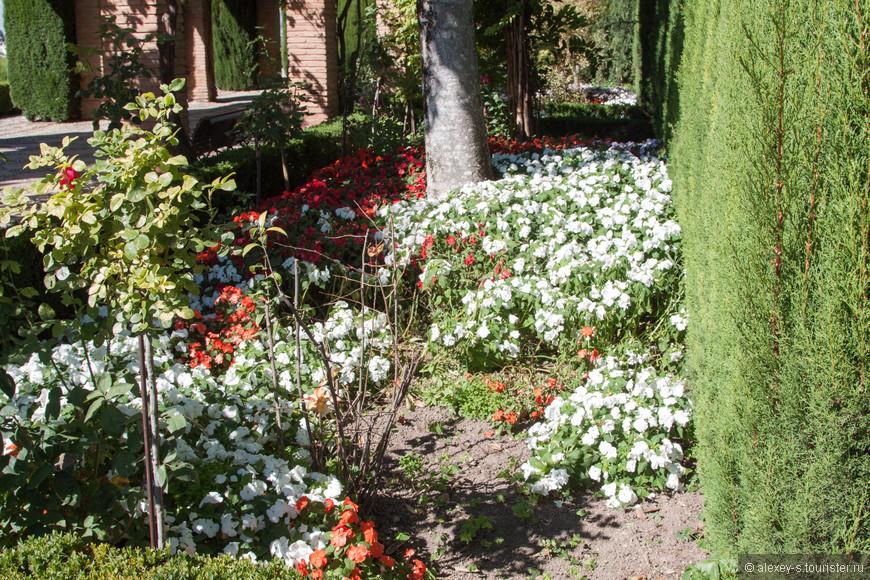 03-сады Хенералифе-2-IMG_0177-2.jpg