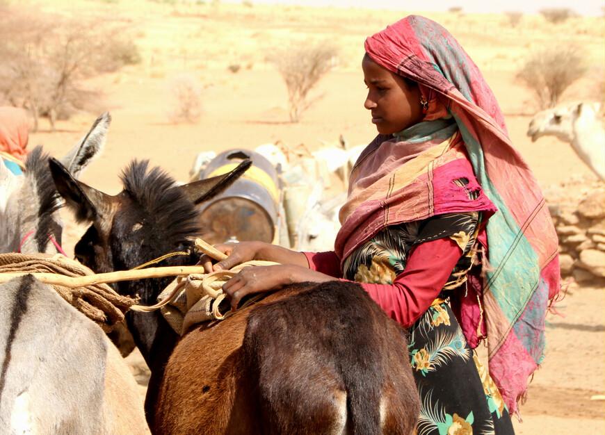 Вообще название «бедуины» не может служить уже обозначением одной определённой народности, а скорее целой группы племён, с более или менее смешанным с арабским элементом. Все такие племена называют бедуинами — в отличие от тюркских кочевников Средней и Северной Азии. Википедия