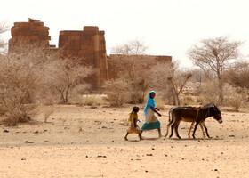 Без чего не могут бедуины