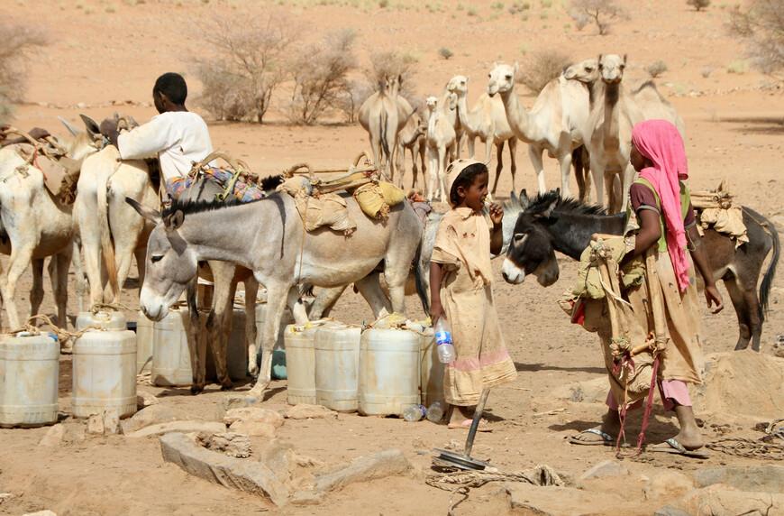Бедуи́ны (араб. бадави — «обитатель пустыни (степи)», «кочевник», от арабского ба́дия — пустыня) — термином принято обозначать всех жителей арабского мира, которые ведут кочевой образ жизни, независимо от их национальности или религиозной принадлежности.