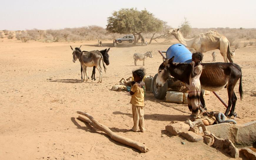 Особенно в Африке именем «бедуины» называют себя и такие кочующие племена, которые ничего общего не имеют с арабами, а принадлежат к хамитической отрасли, но которые с течением времени усвоили себе отчасти арабский язык и выдают себя за настоящих бедуинов или арабов, пришедших из Аравии.