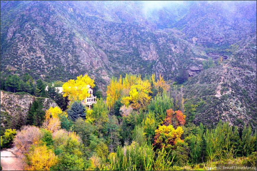 Осенние краски в заповеднике Вильявисенсио.