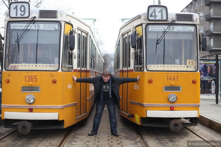В Будапеште очень красивые желтые трамваи.