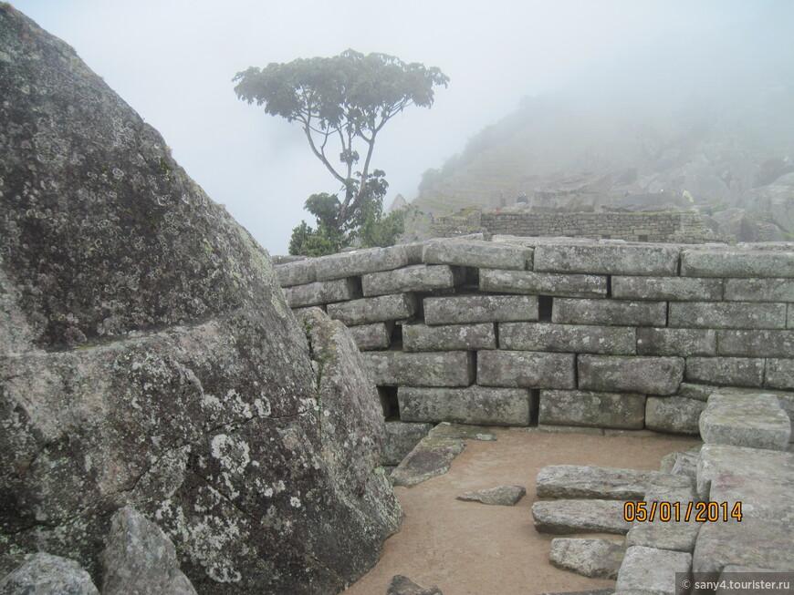 В этом регионе землетрясения - не редкость. Но в Мачу Пикчу мы нашли только одно место, где камни кладки сдвинулись после подземных толчков.