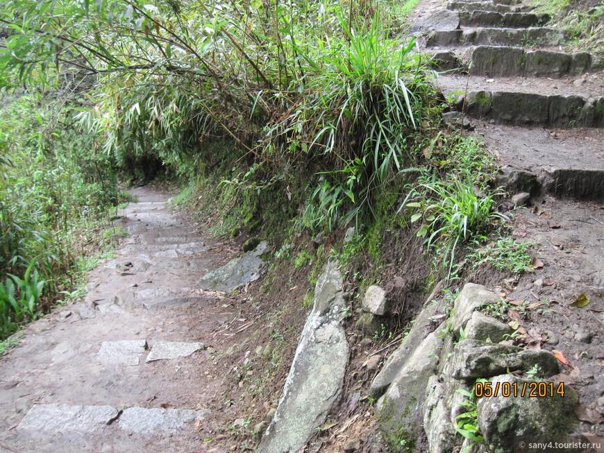 Довольно крутая, узкая, извилистая тропа, местами очень скользкая после дождей.