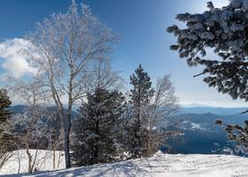 Снежный Шерегеш