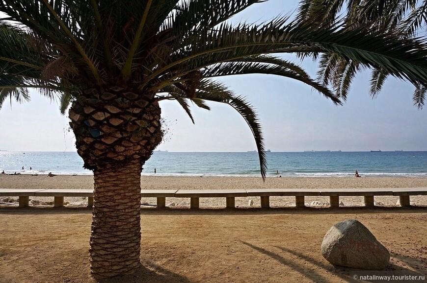Пляж Таррагоны