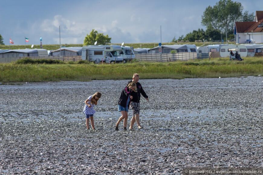 Напротив, отдыхающие с удовольствием разуваются и отправляются в прогулку по дну морскому.