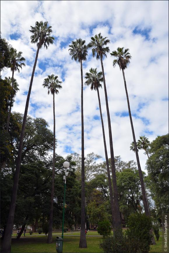 И оказываемся внизу в парке Сан-Мартин.