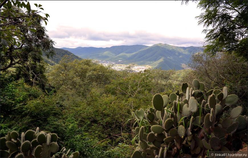 Сальта лежит в долине Лерма, зажатая между зеленых холмов и горных цепей.