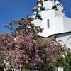 Русская церковь в сердце Голливуда