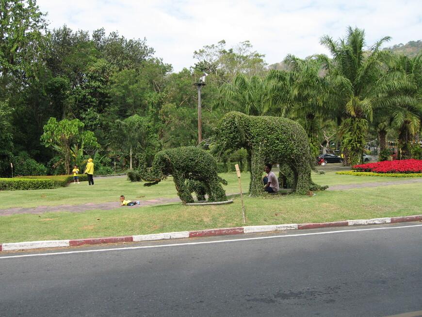 У входа в Тропический  парк Нонг Нуч
