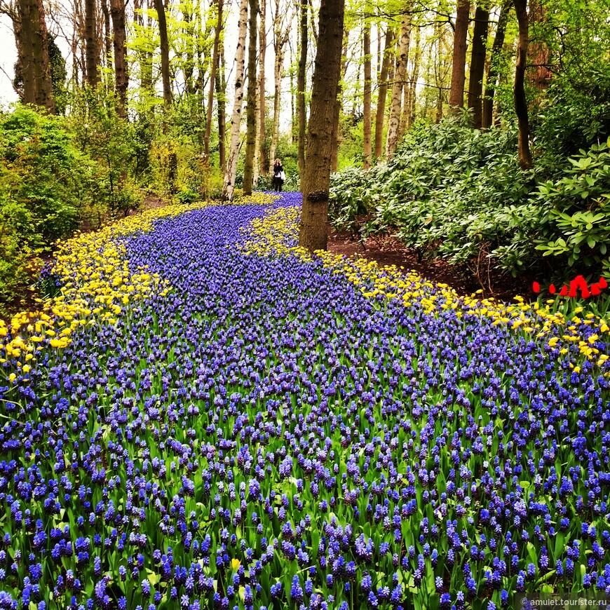 Парк Кейкенхоф является самым фотографируемым в мире.