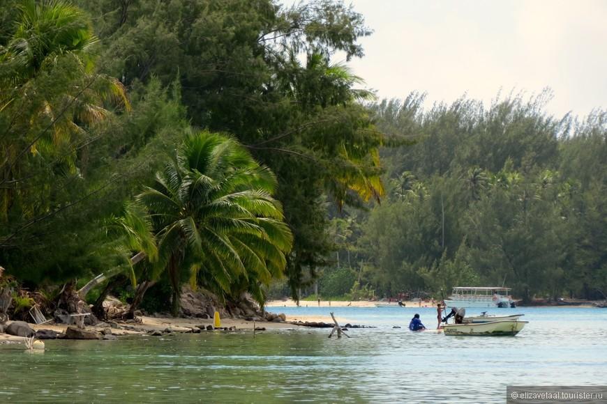 Муреа в целом популярна для занятий водными видами спорта, как катание на доске с веслом, кайтбординг, водные лыжи и даже серфинг.
