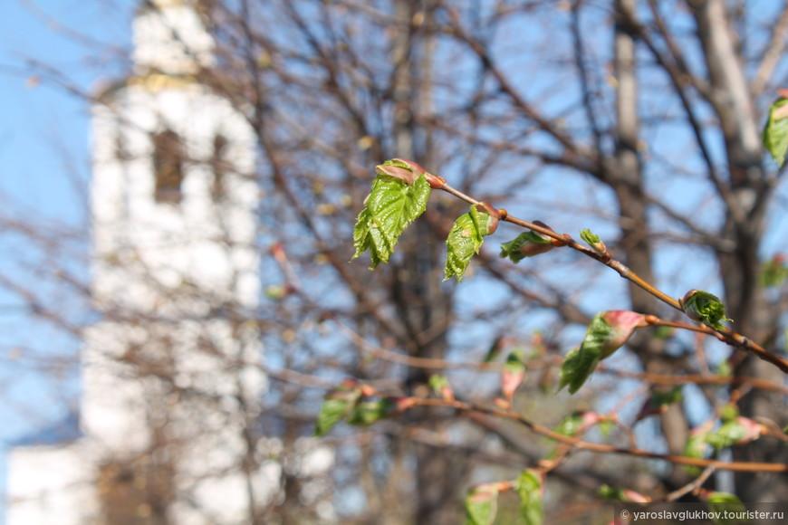 Весна в монастыре.