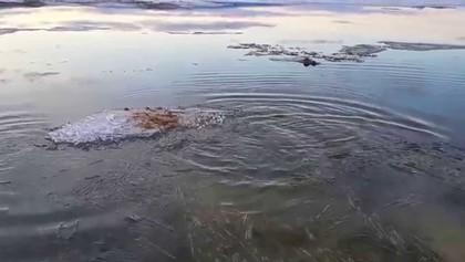Как расходится лед на Байкале, 00:36
