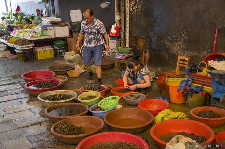 В один из дней мы решили посетить местный рынок, который, правда, больше напоминал огромный зоомагазин. Какой живности здесь только не было…