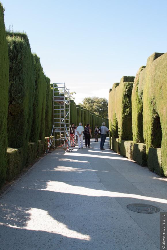 07-верхняя зона Альгамбры-IMG_0536-1.jpg