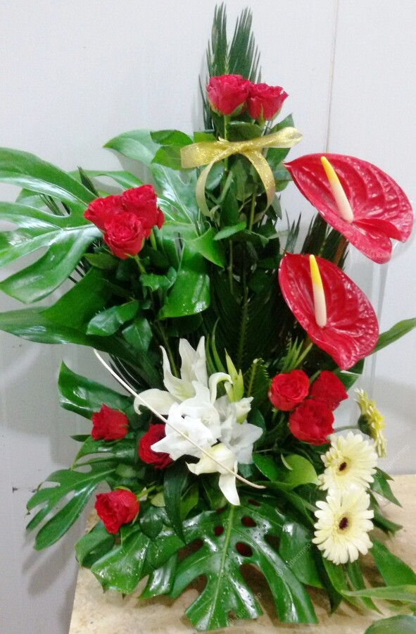 Где купить цветы в шарм эль шейхе букет нарциссов заказать