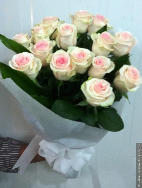 60$ - Доставка цветов в Египте (Шарм-Эль-Шейх) - http://экскурсии-в-египте.рф/service/12578