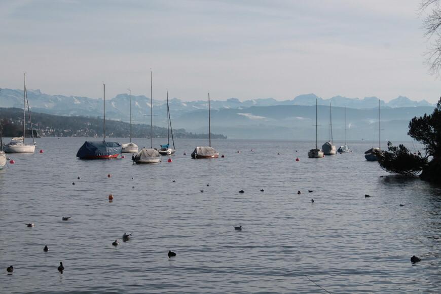 Цюрихское озеро, вид на Альпы (Экскурсия по Цюриху на машине)