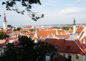 Таллин летом