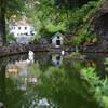 Район Монте известен, прежде всего, живописным видом и прекрасным Тропическим садом.