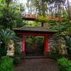 Незабываемый Тропический парк дворца Монте.