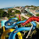 Аквапарк «Дельфин» в Геленджике