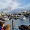 Пирс 39 - вид на город и морских котиков