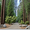 Самый высокий водопад Северной Америки - Йосемитский водопад