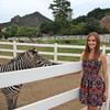 На ранчо Вы познакомитесь с тремя зебрами: Тимон, Пумба и Рафики