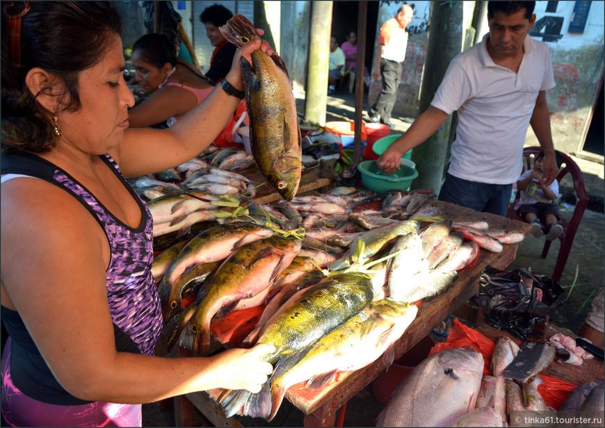 На рынке в Белене в окрестностяхИкитоса. И чего там только нет!