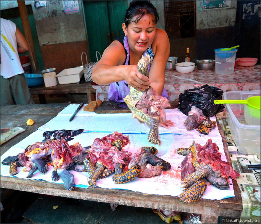 Мясо черепах широко используется в пищу.