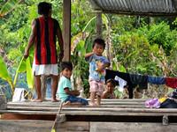 Жизнь на Амазонке