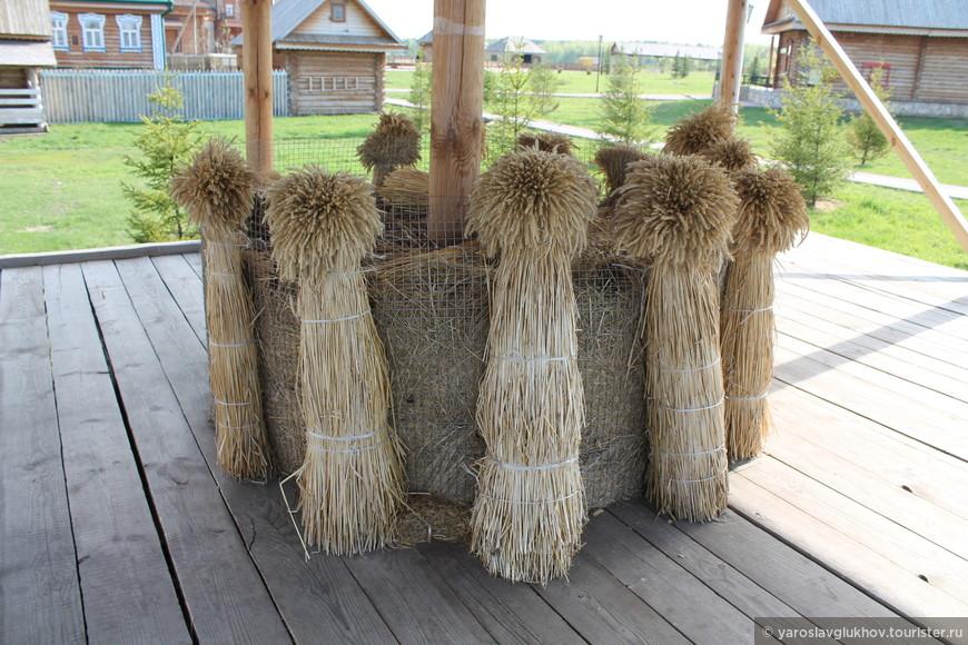 Снопы пшеницы.