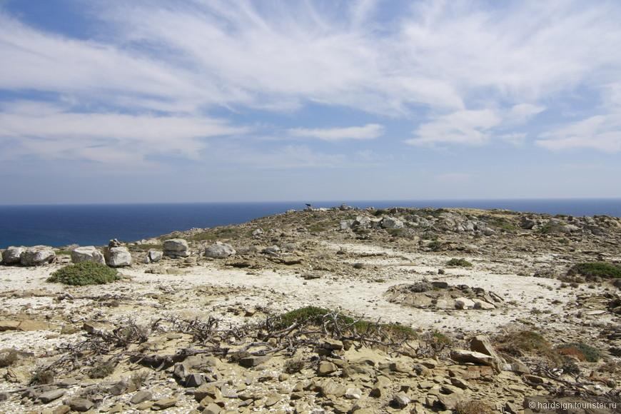 Единственные животные которых мы встретили - горные козлы. Если присмотреться, можно их увидеть на фоне моря.