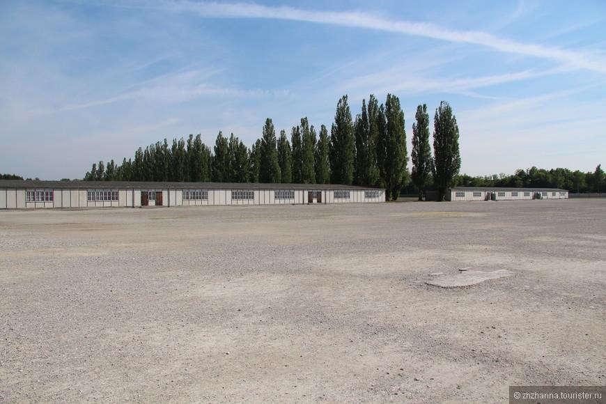 Два из сохранившихся бараков для заключенных Между бараками тополиная аллея, посаженная бывшими узниками концлагеря.