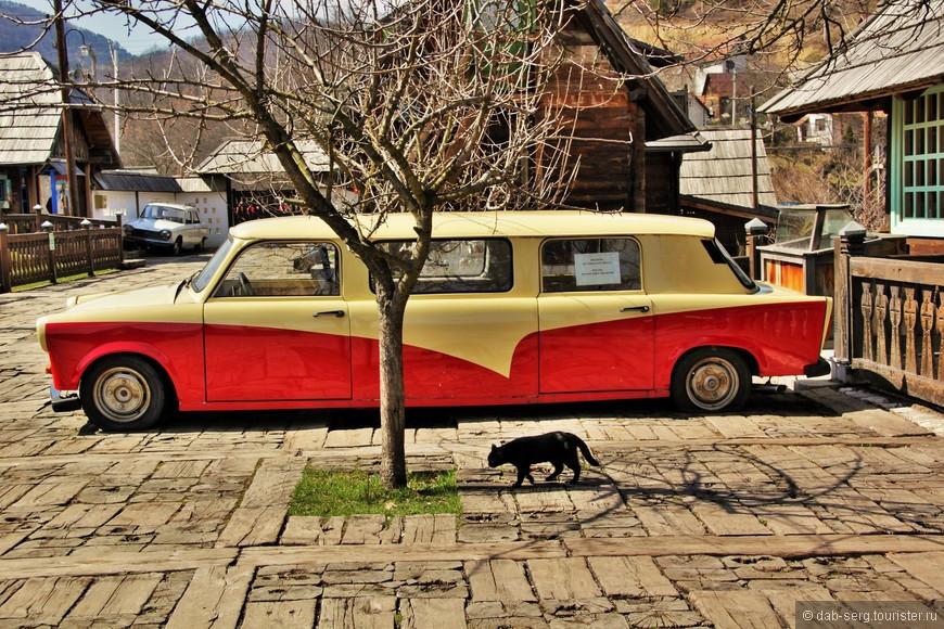 ....ну как тут без чёрных кошек)) белую не видел
