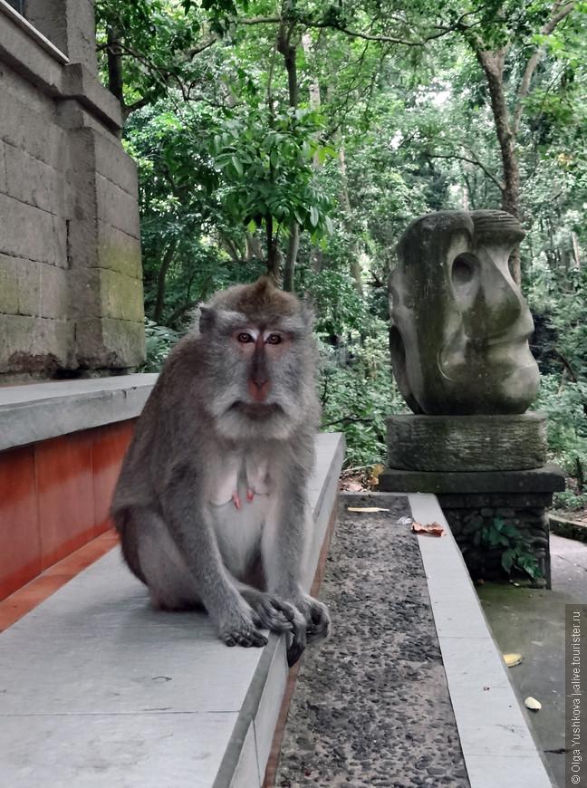 """Из Куты примерно за час добрались до Убуда, и вот мы уже гуляем в Monkey Forest, - в тропическом лесу, где живёт """"много-много диких обезьян""""... ))) Почему-то это одно из самых популярных мест у туристов в Убуде..."""